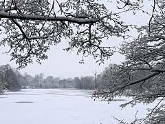 Lake at Weald Park